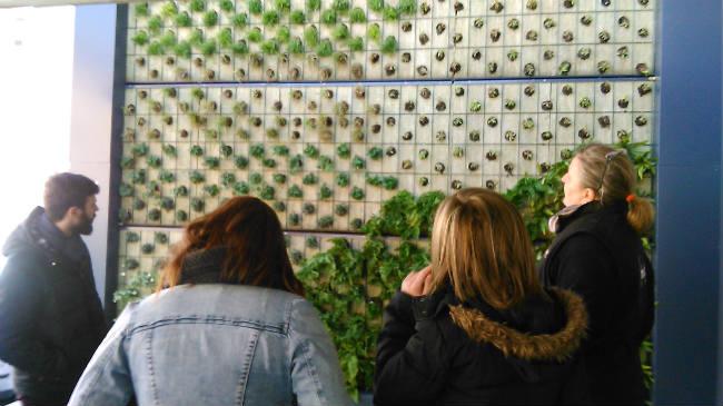 visita jardín vertical_alumnos creanavarra